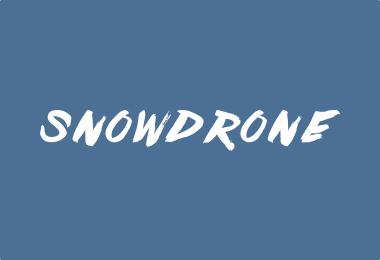Snow Drone